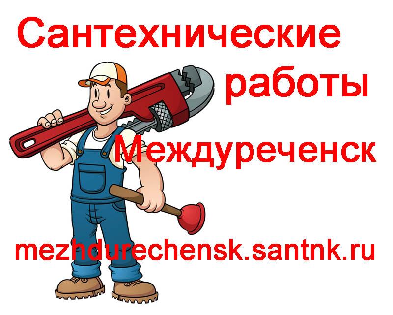 Сантехнические работы Междуреченск